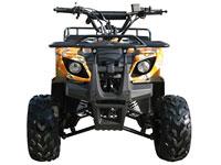 MID SIZE Utility ATV